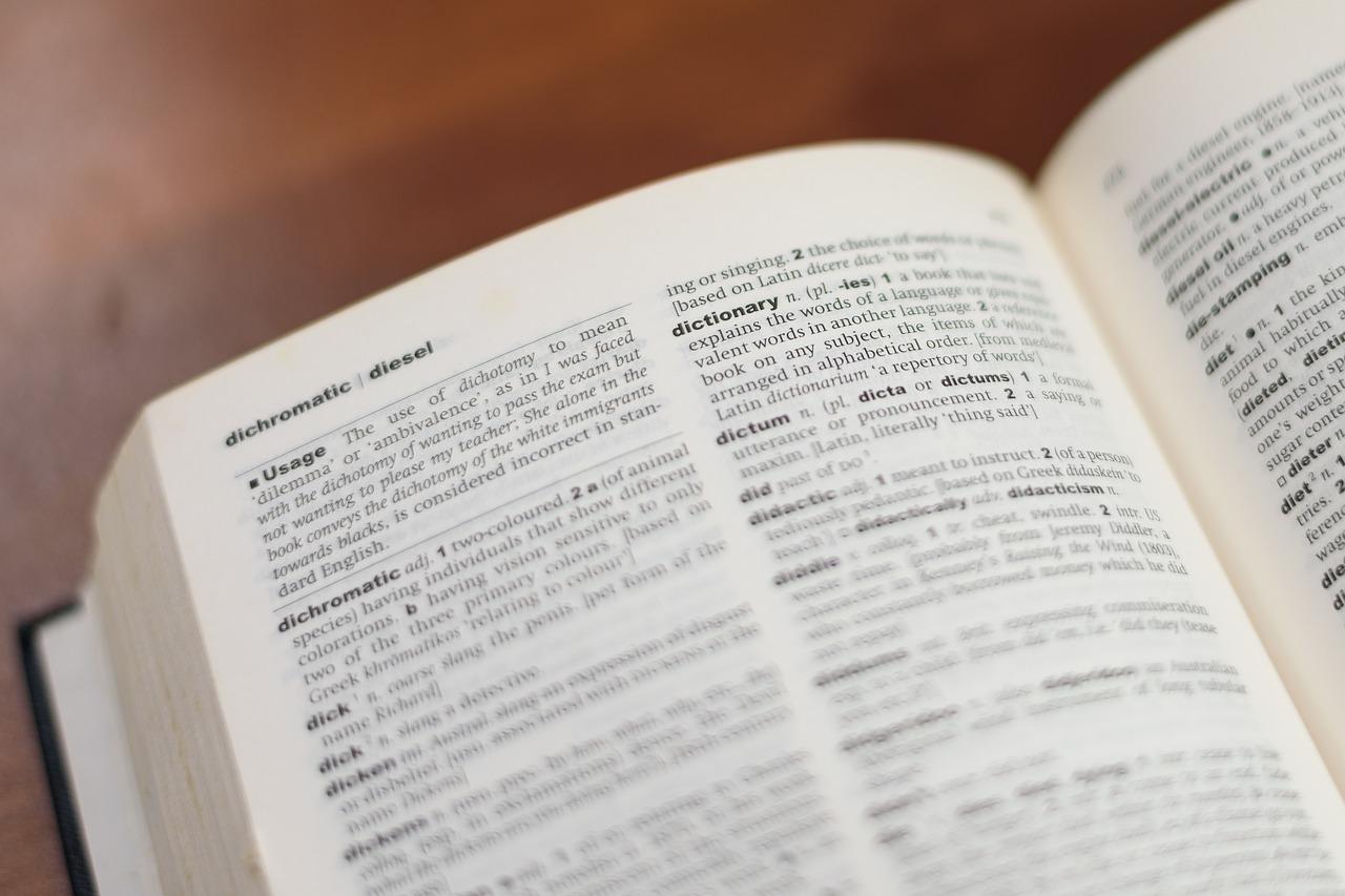Profesjonalne tłumaczenia ustne i pisemne